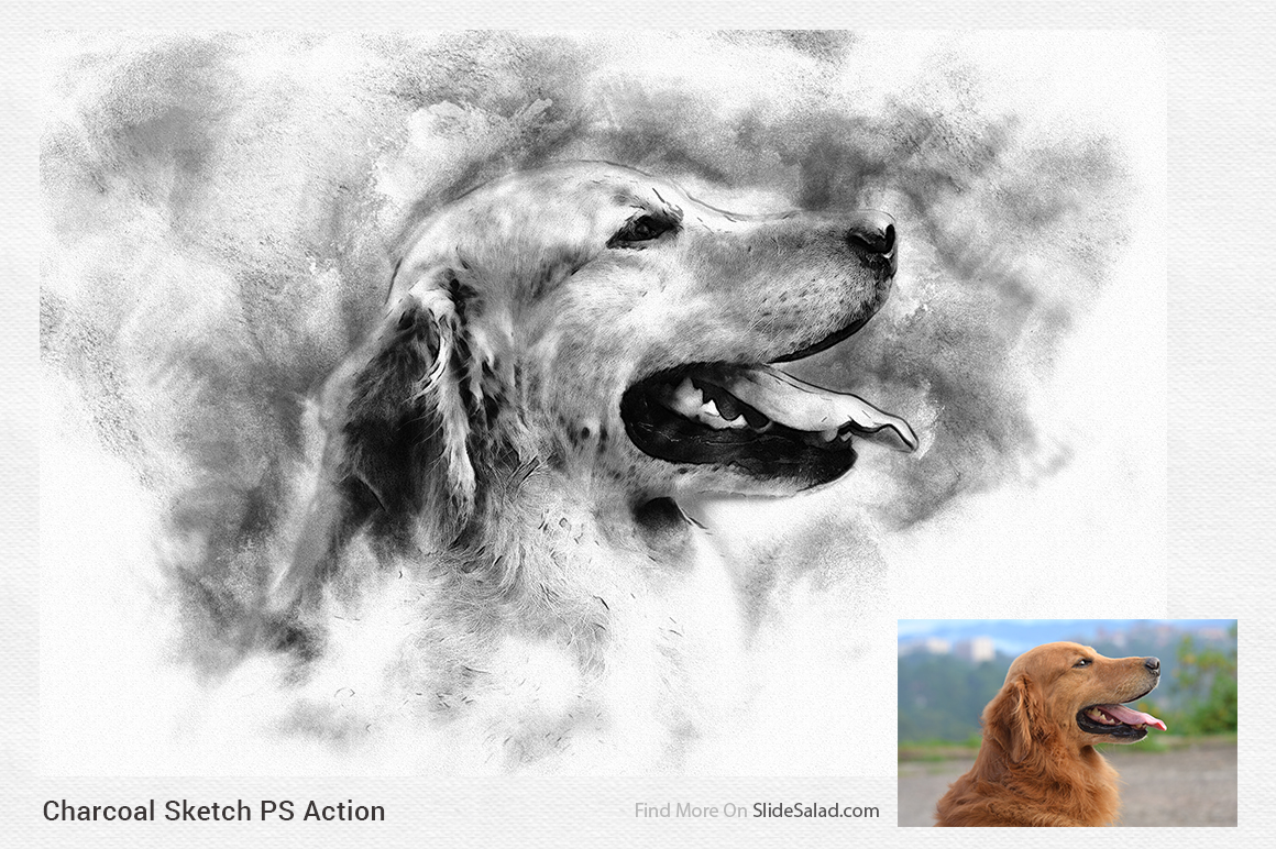 Charcoal Sketch Photoshop Action example image 6