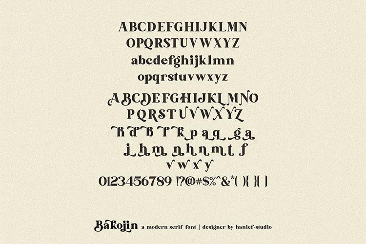 Bakojin//Modern Serif Font example image 14