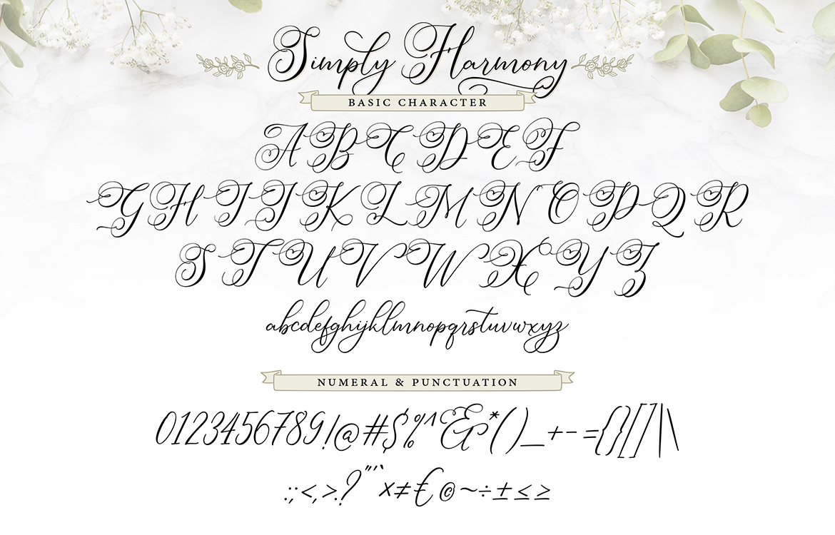 Simply Harmony | ASimply Stylistic Modern Calligraphy Script example image 7