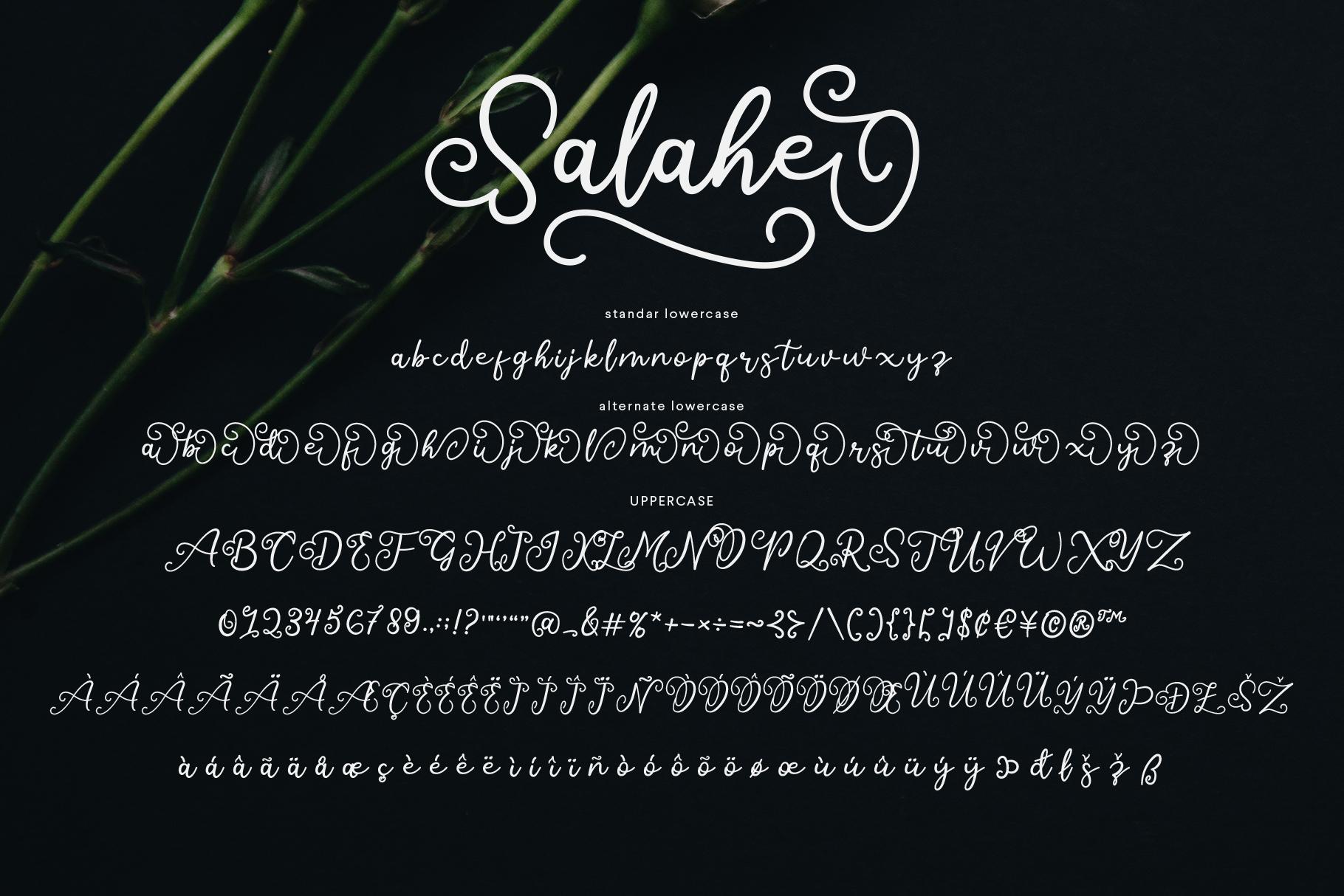 Salahe - a funcy cursive font example image 11