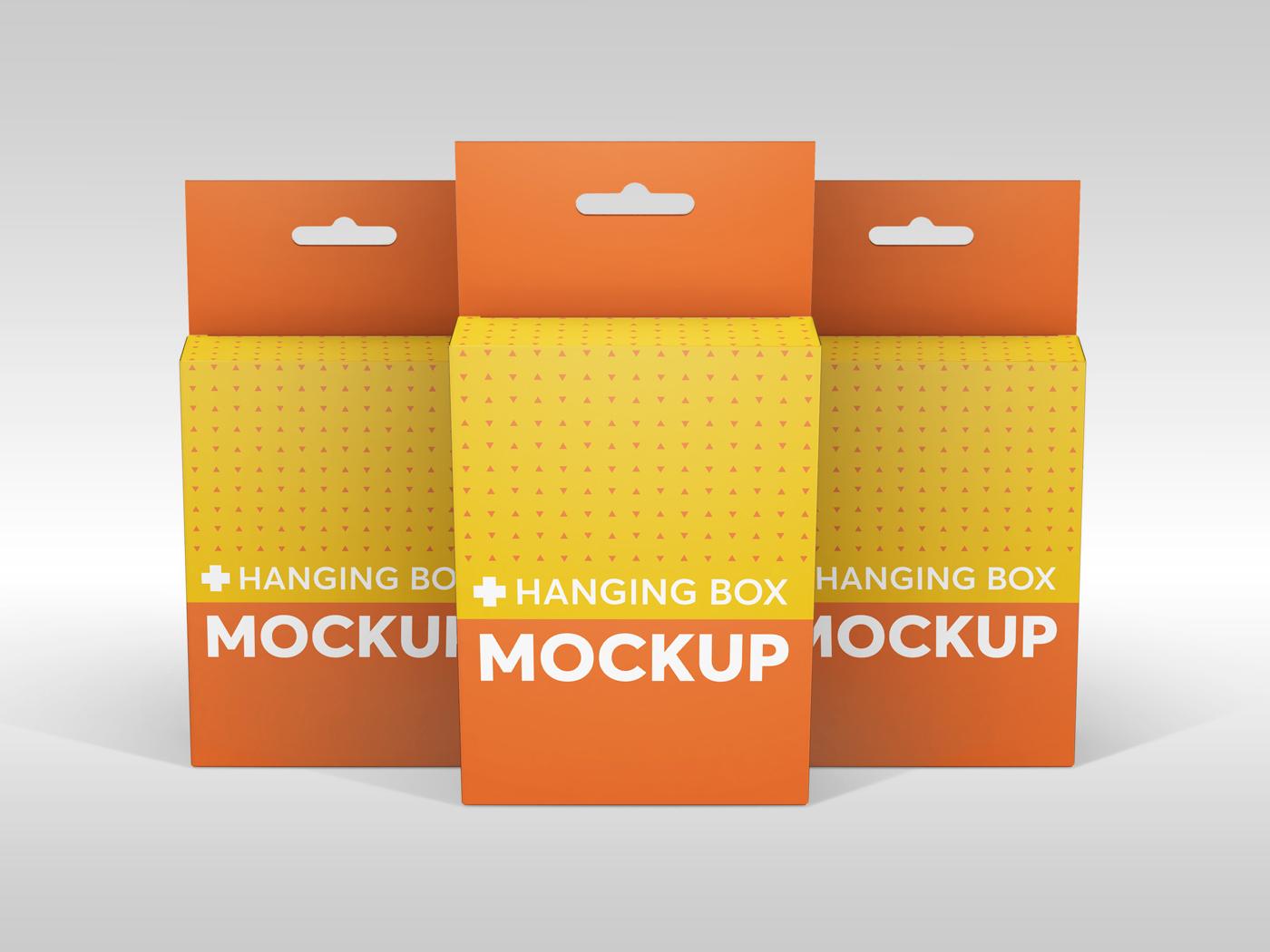 Flat Rectangle Box with Hanger Mockup example image 15