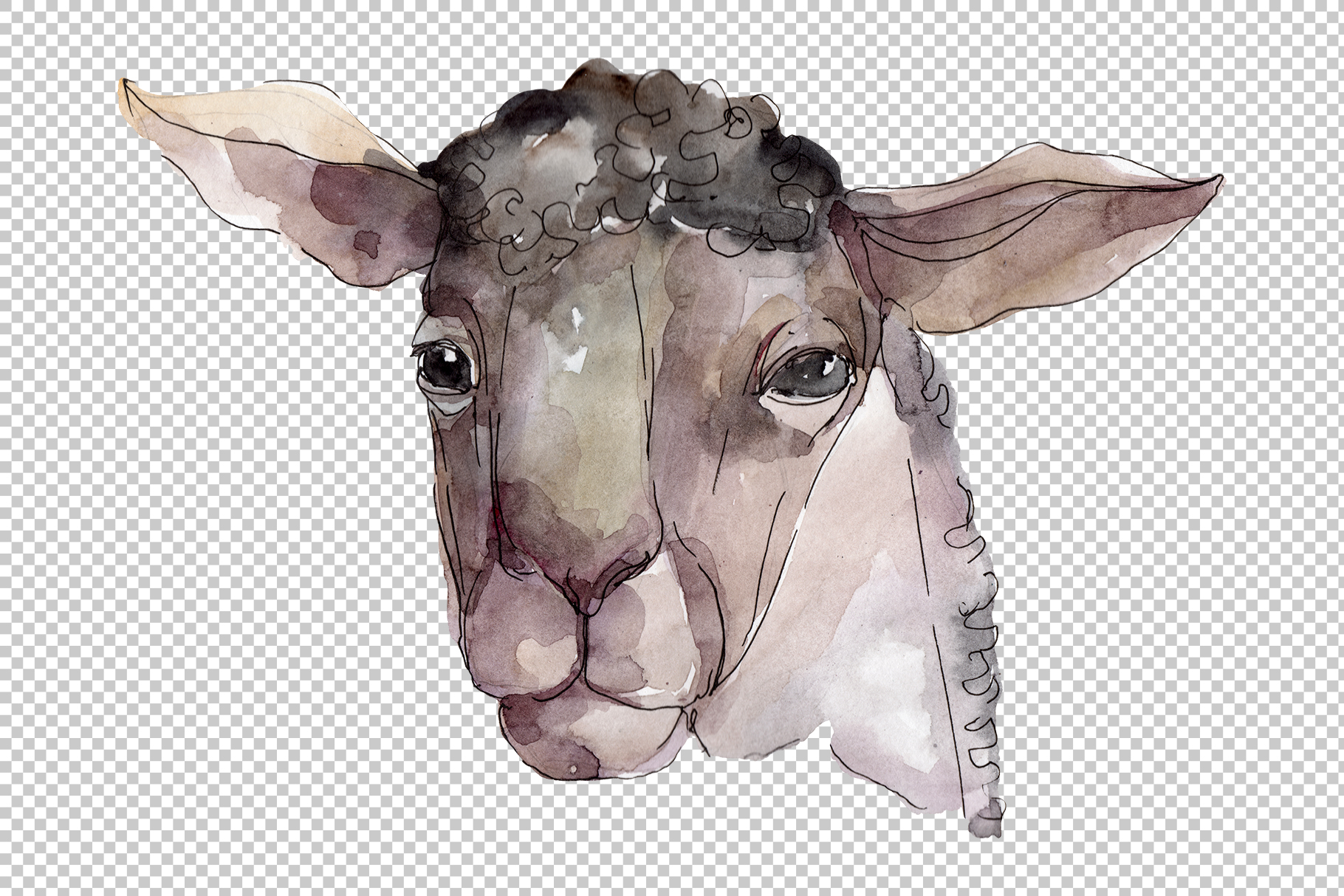 Farm animals Ram head Watercolor png example image 2