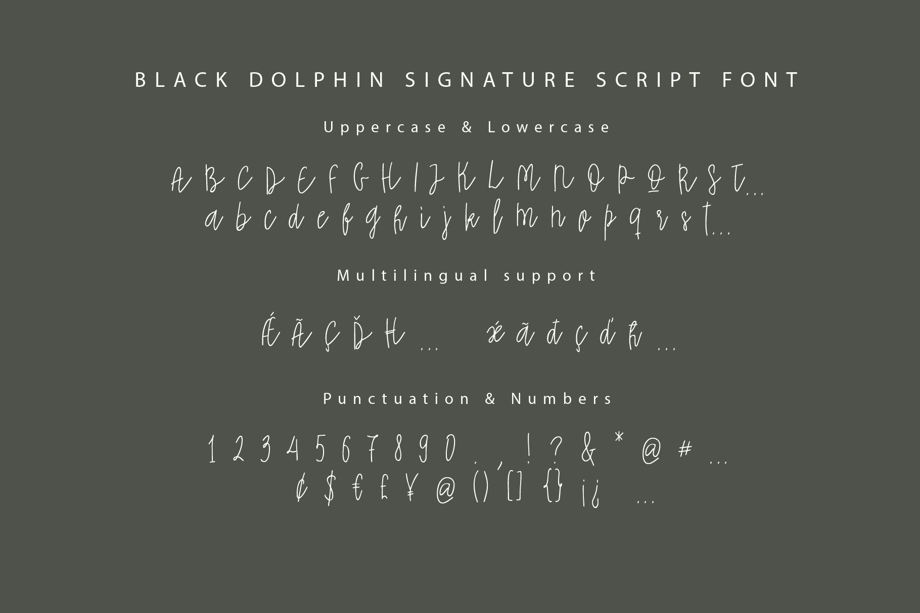 Black Dolphin |Multilingual Sans & Signature Font Duo example image 5