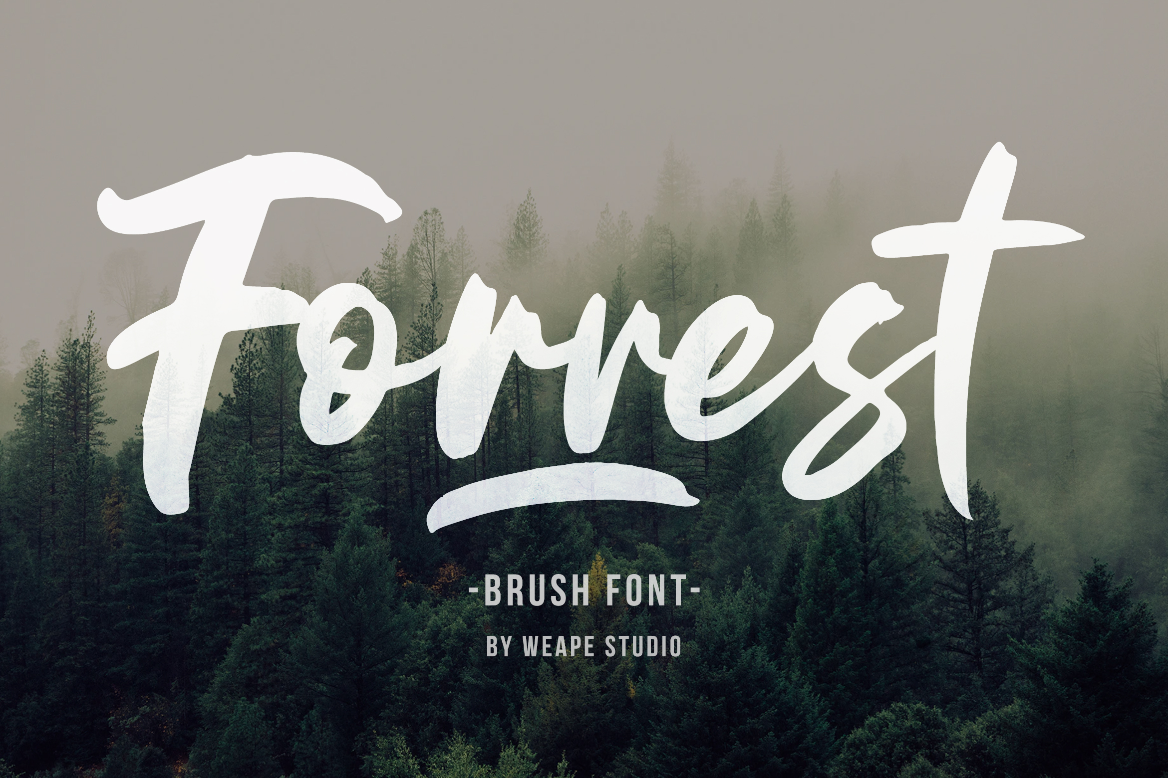 Forrest - Brush Font example image 1