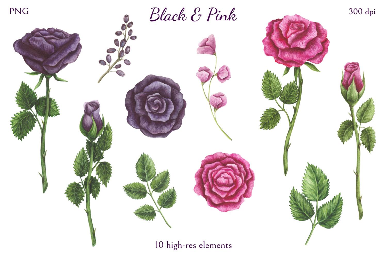 Black & Pink example image 2