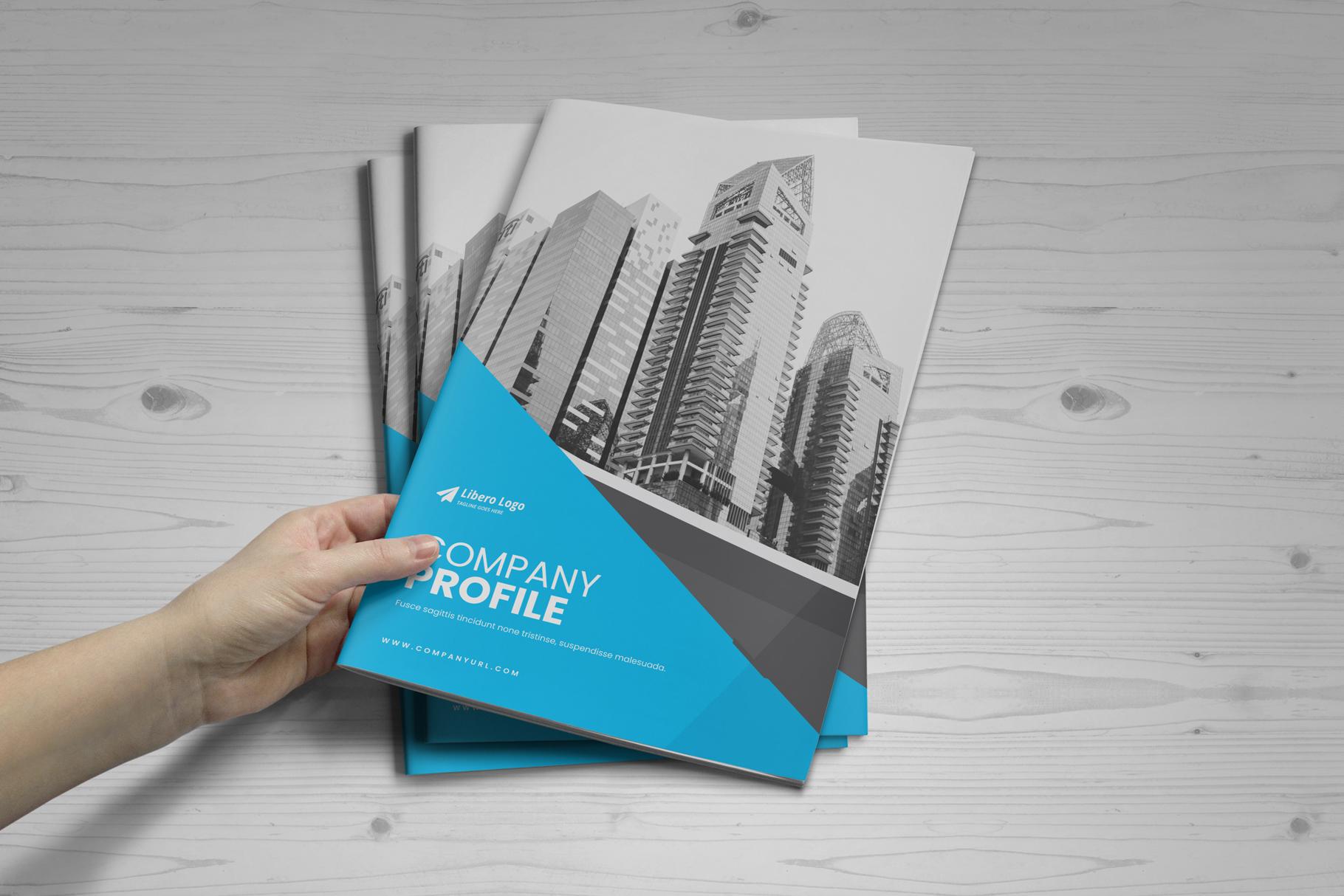 Company Profile Brochure v10 example image 12
