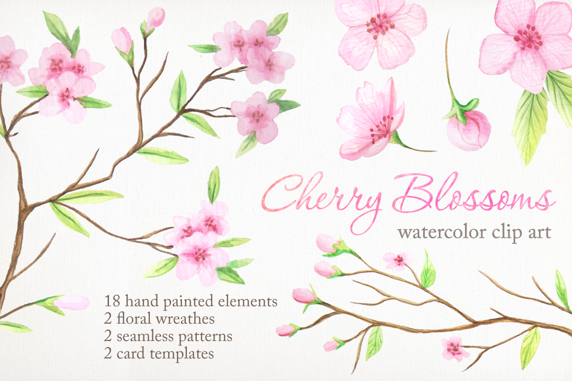 Watercolor Cherry Blossoms example image 1