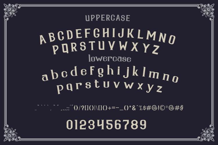 Serdane Typeface & Vector example image 2