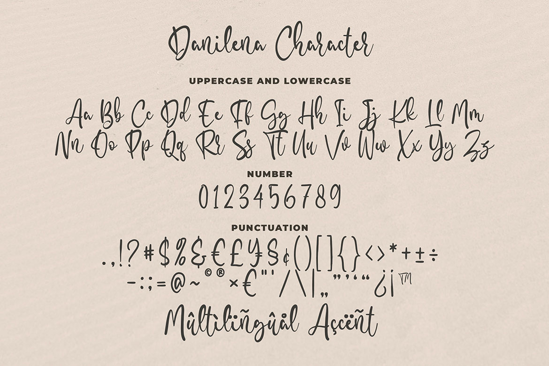 Danilena - Modern Script Font example image 5