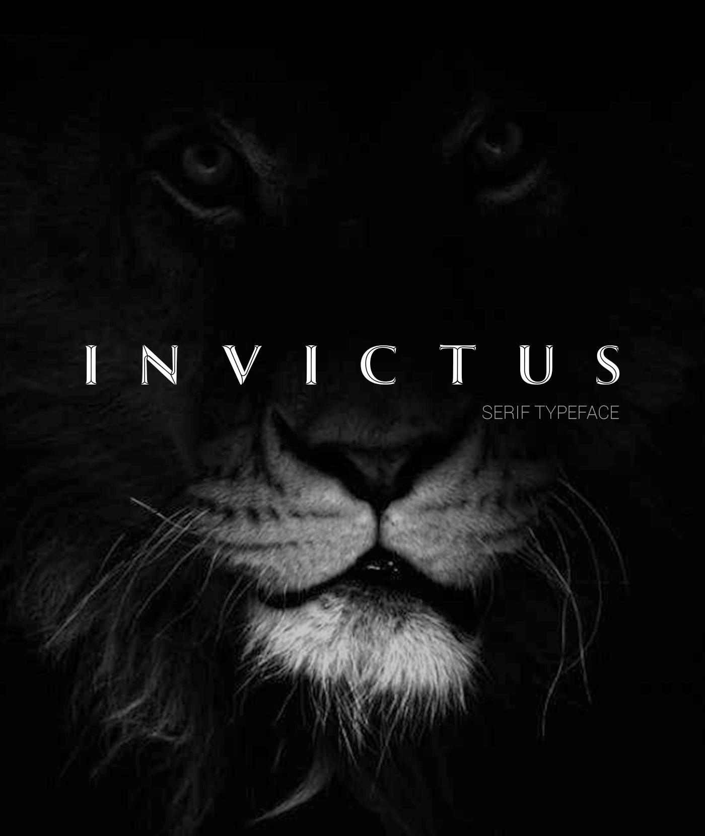 Invictus Serif Typeface example image 8