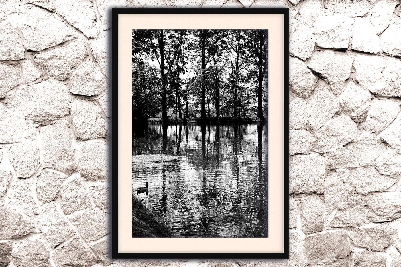 Nature photo, landscape photo, lake photo example image 4