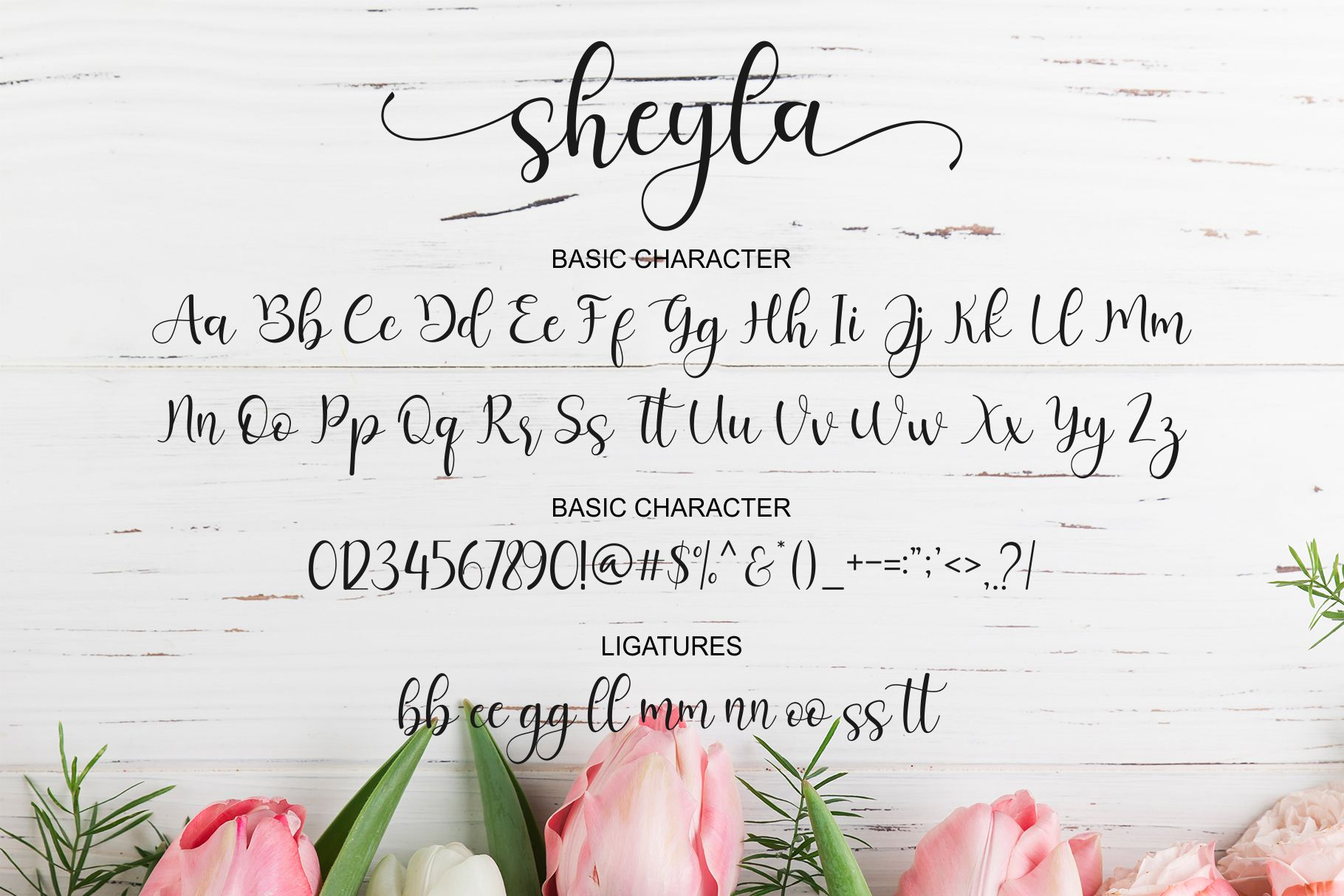 Sheyla Modern Script example image 8