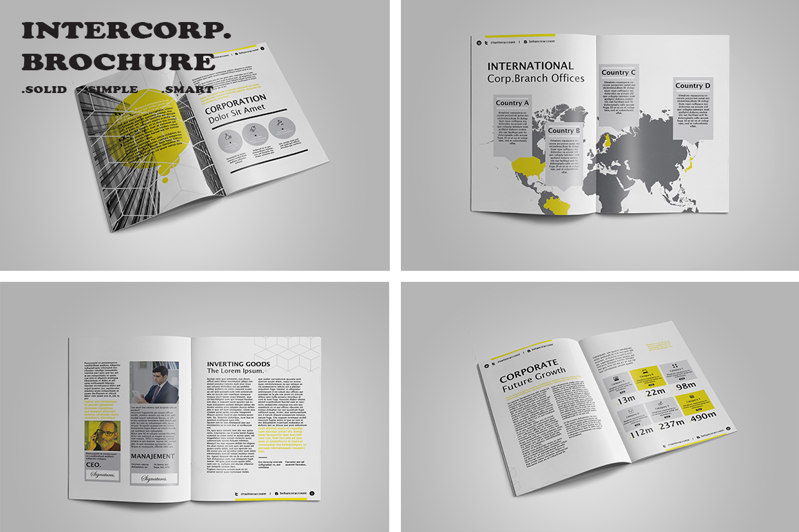 Intercorp Brochure Template example image 3