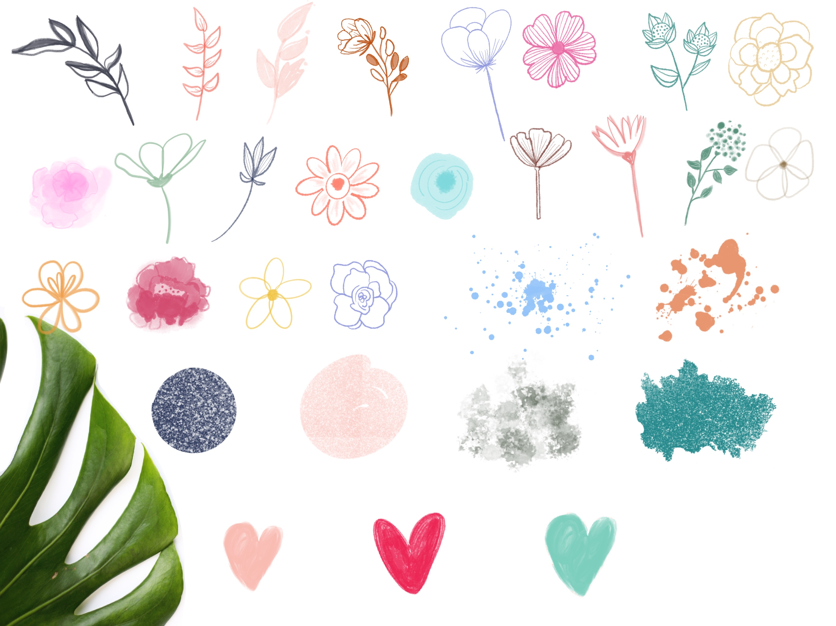 Botanica Watercolour Stamp Brushes for Procreate example image 9