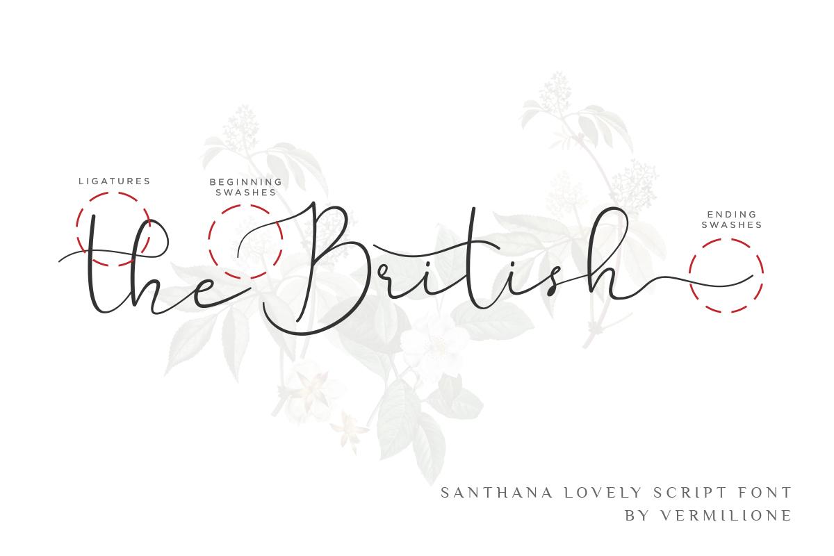 Santhana Lovely Script Font example image 7
