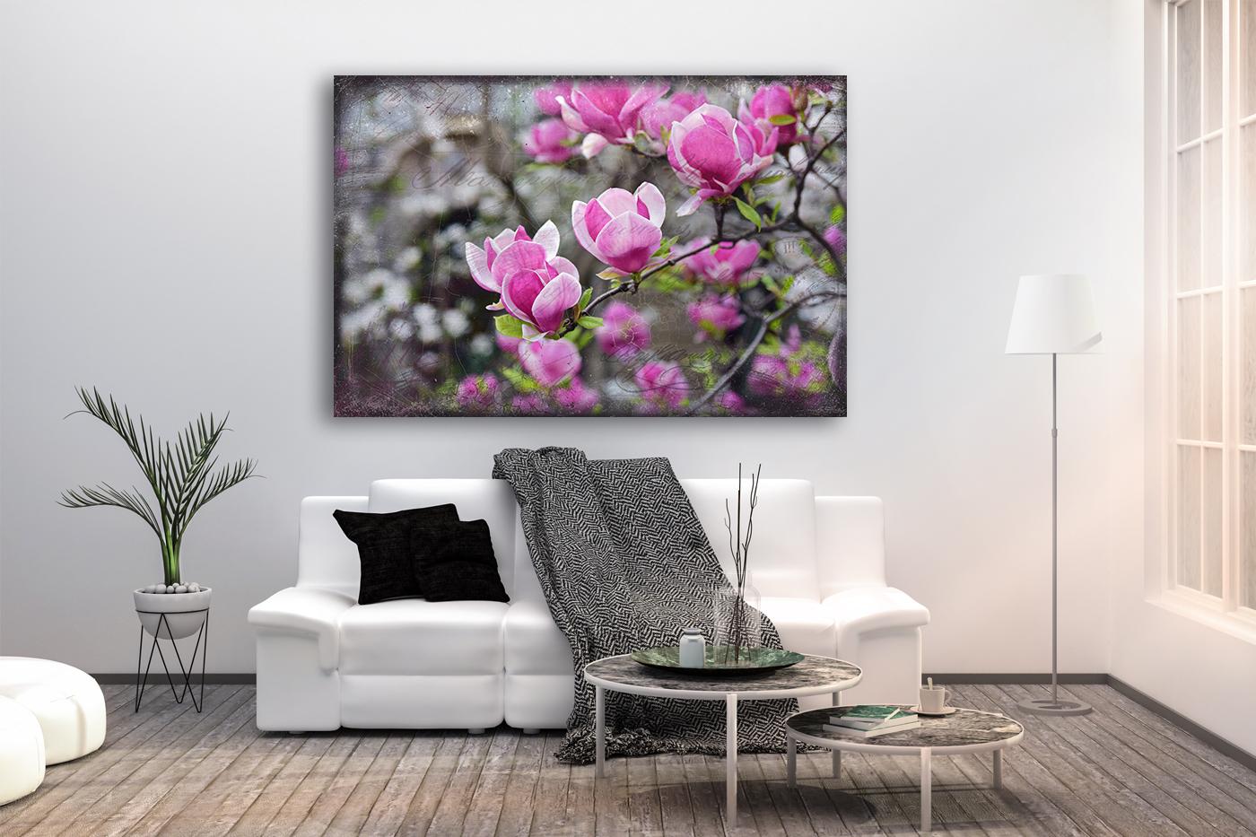 Nature photo, floral photo, spring photo, magnolia photo example image 3