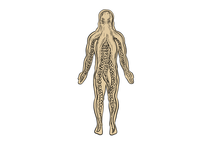 Alien Octopus Inside Human Body Drawing example image 1