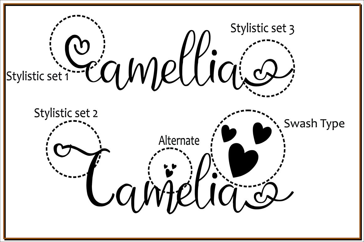 Camellia example image 2