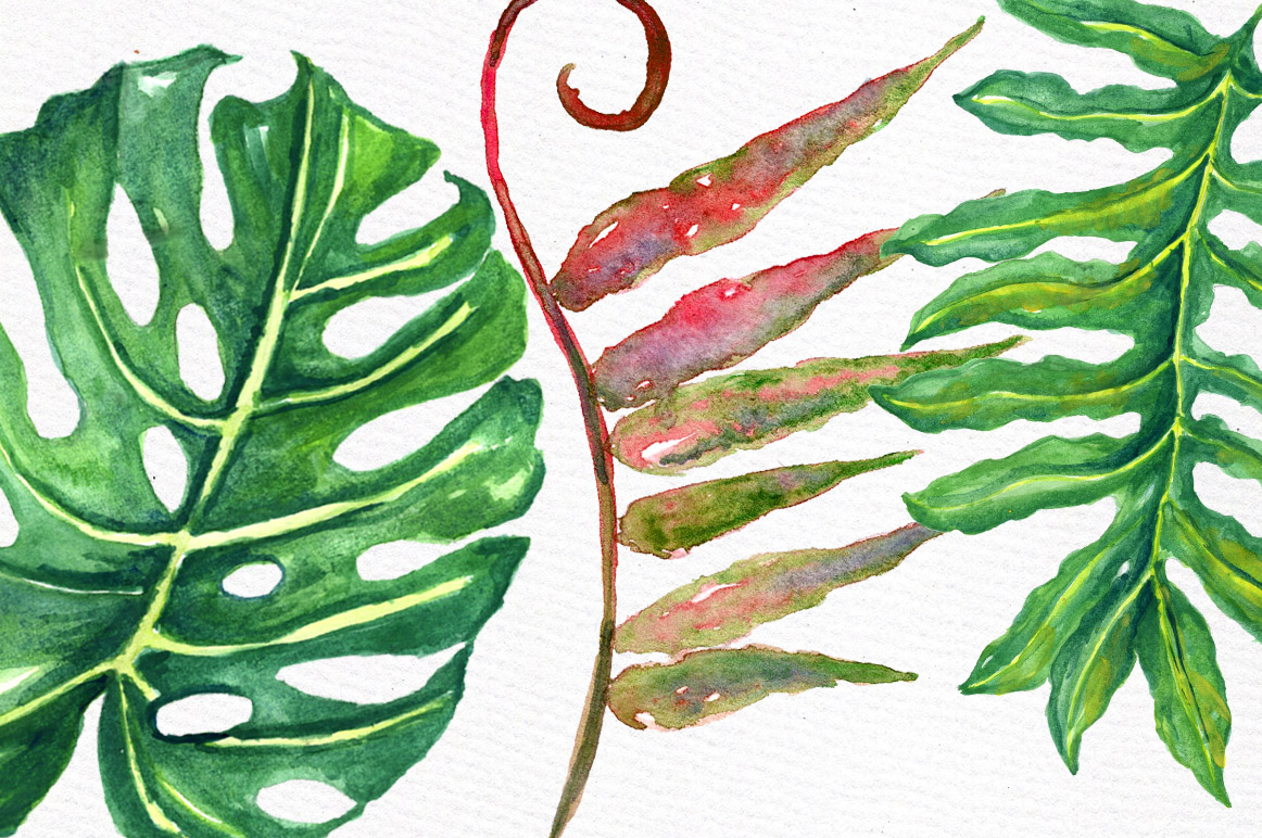 Tropical watercolor leaves example image 3
