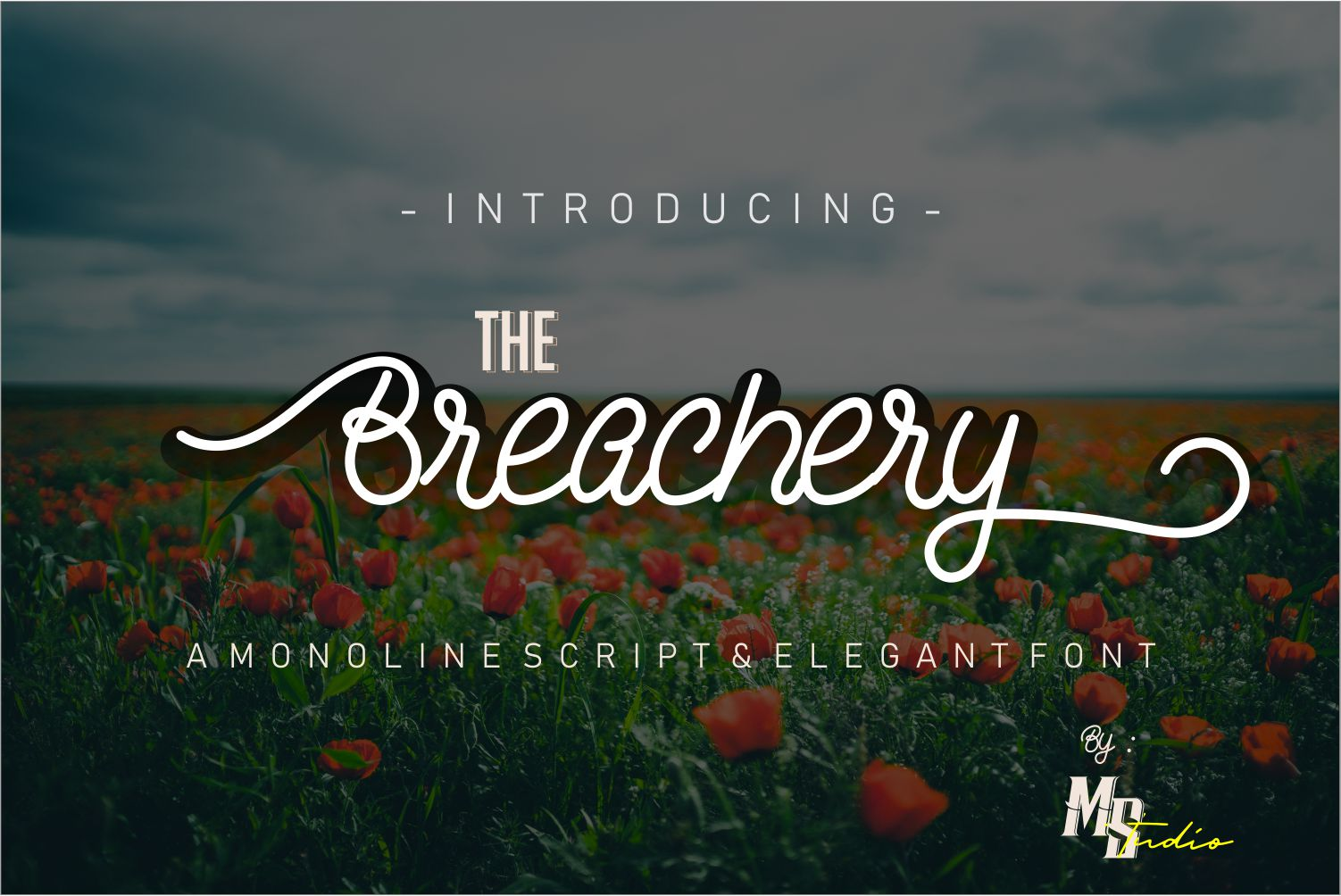The Breachery Script Font example image 1