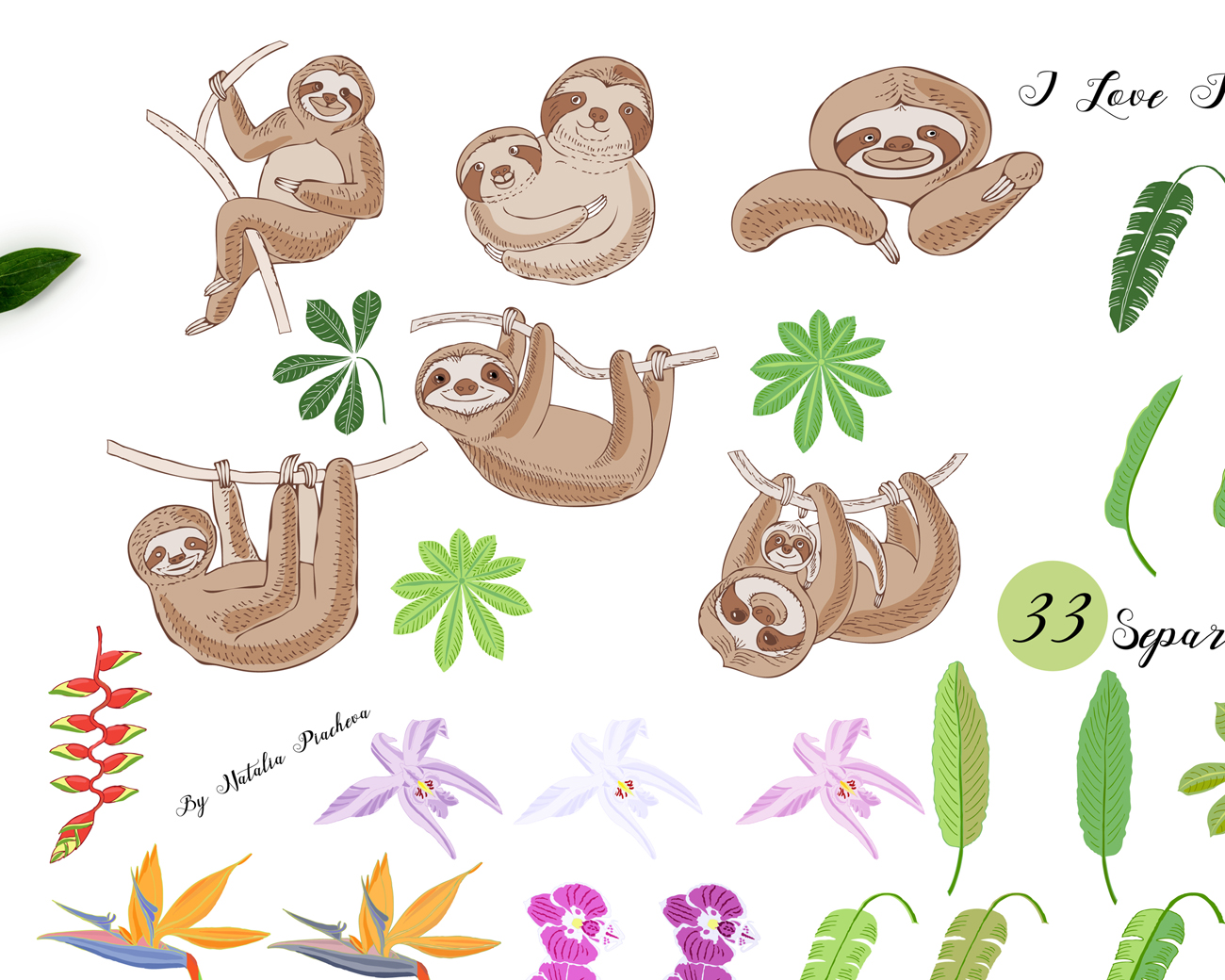 Sloths in Jungle Digital Clipart example image 3