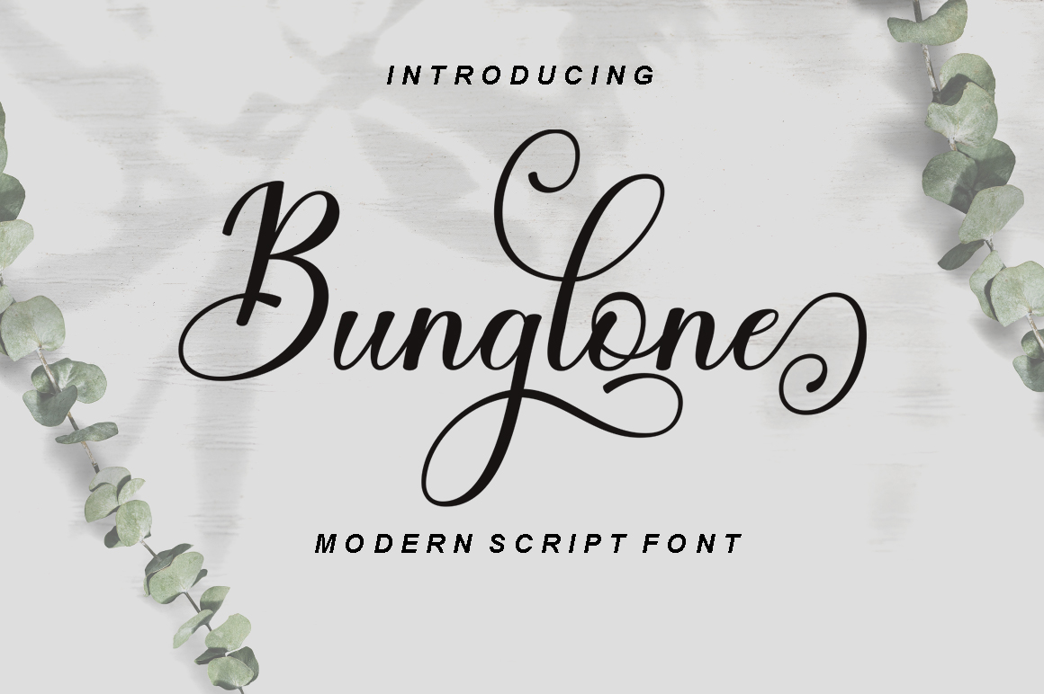 The Calligraphy Font Bundle example image 4