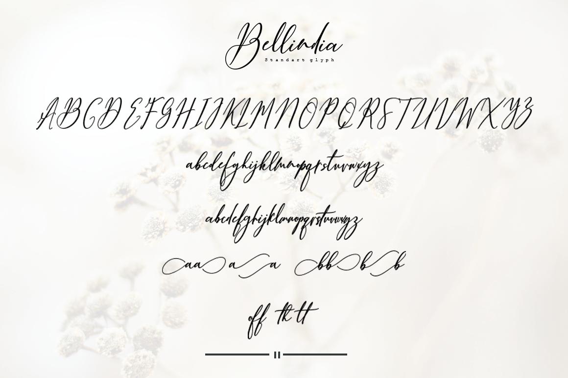 Bellindia example image 8