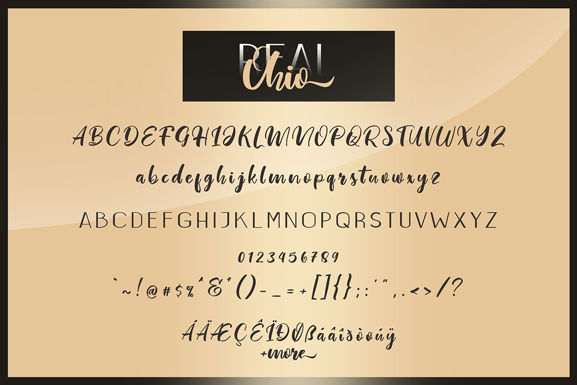 Real Ohio Font Duo example image 8