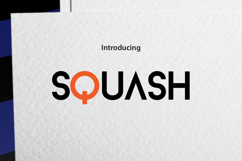 SQUASH example image 1