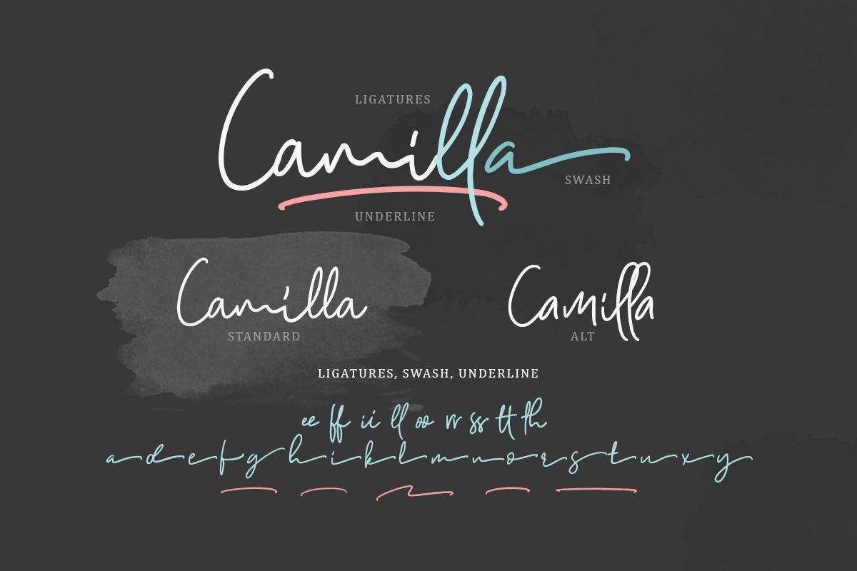 Camilla - Signature Script 6 Fonts example image 2
