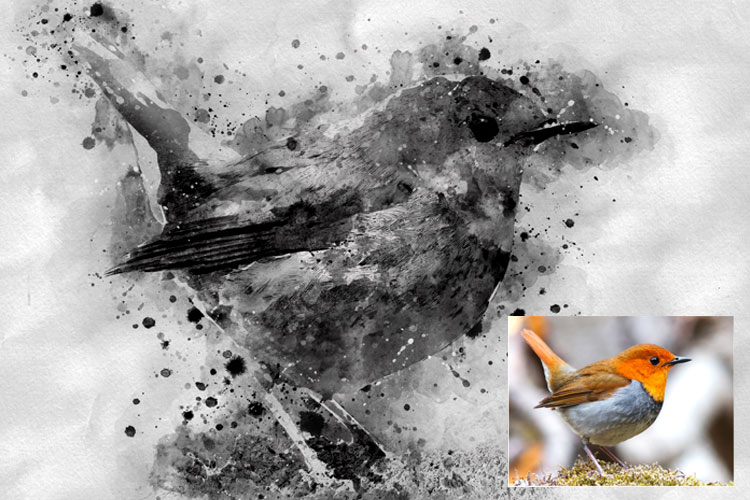 Water-Ink Photoshop Action example image 13