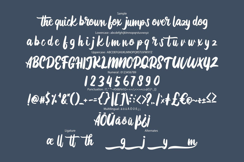 Diotam | Modern Script Font example image 6