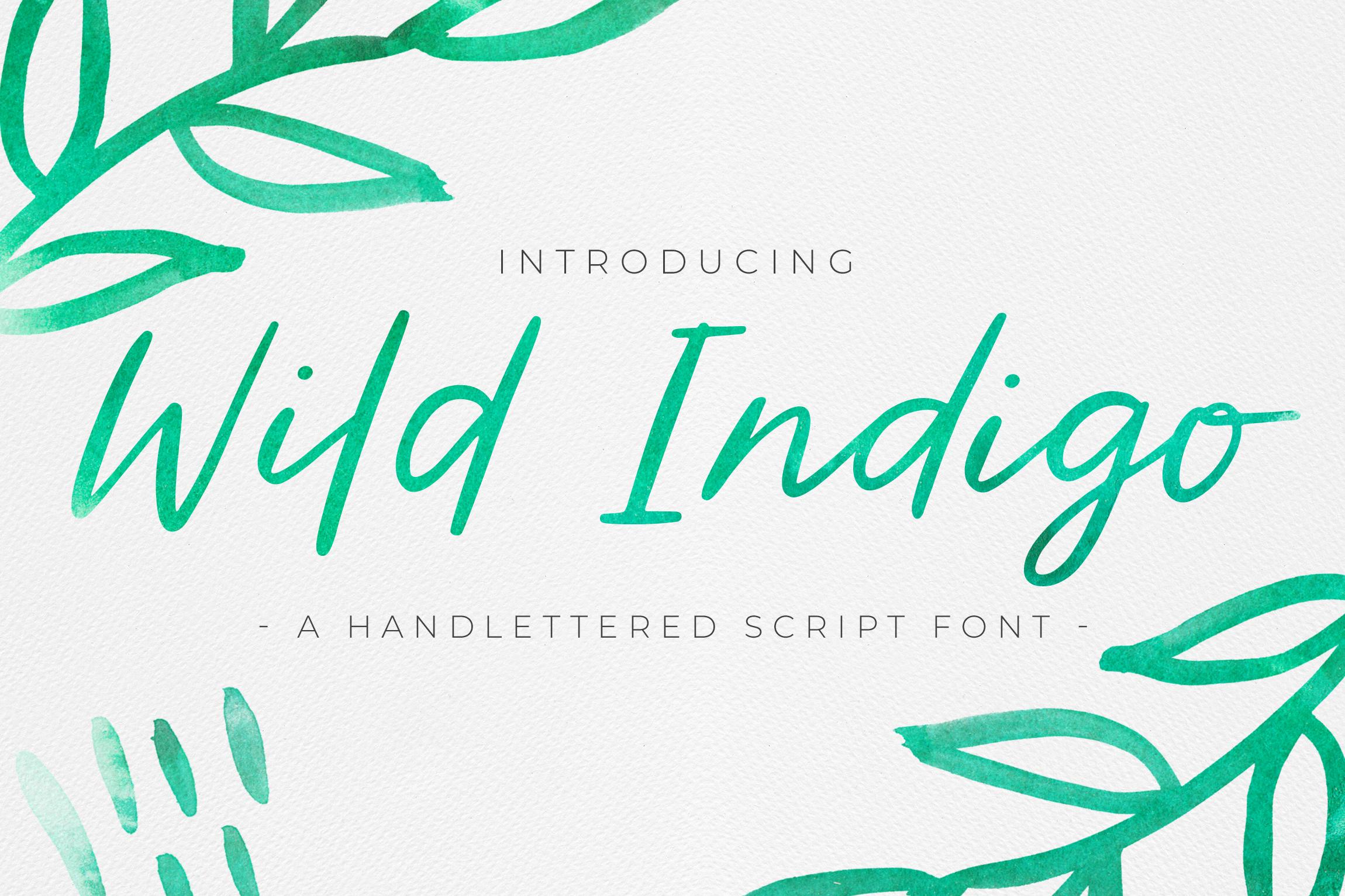 Wild Indigo Script Font example image 1