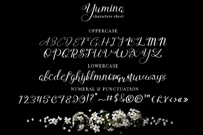 Yumina example image 7