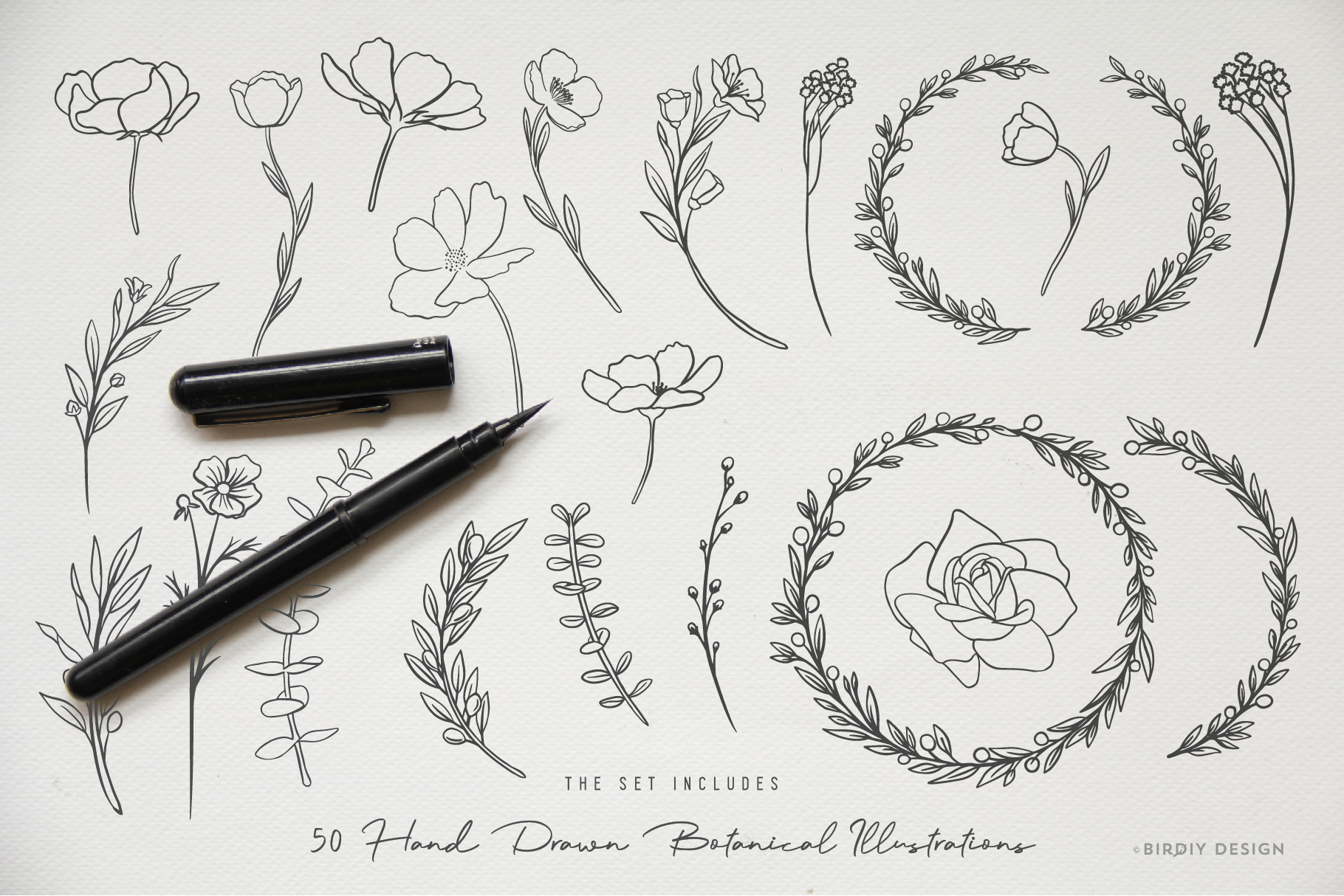 Botanical Illustrations & Logo Kit example image 5
