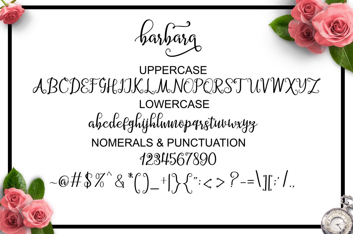 Barbara Script example image 9