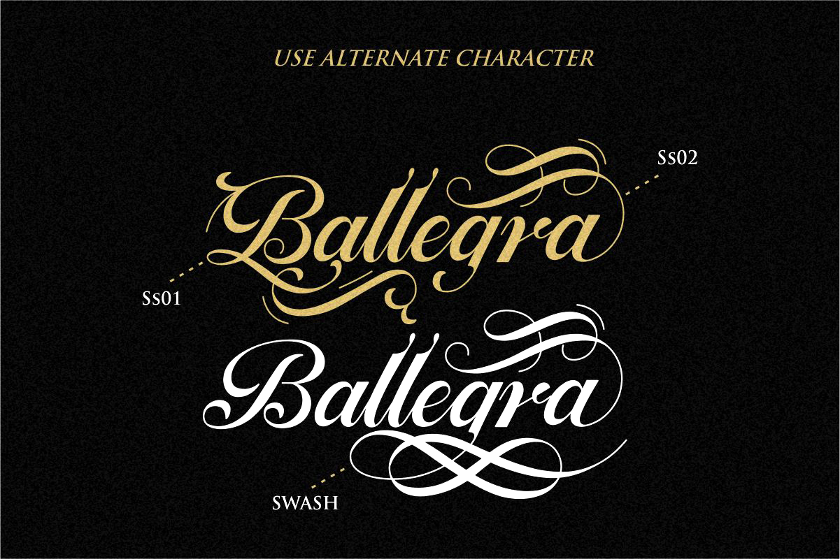 Ballegra Solid & Outline Script example image 8