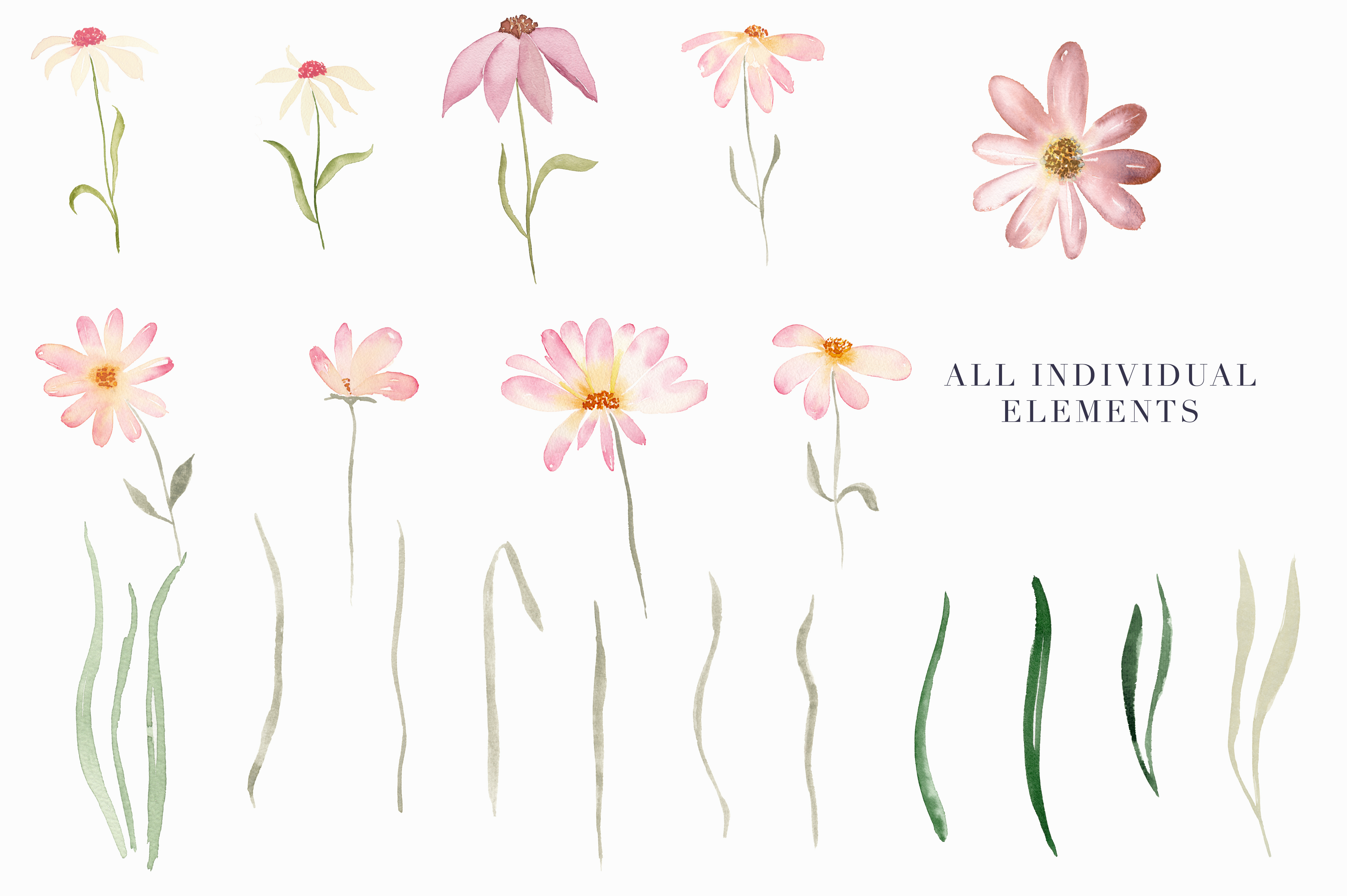 Watercolor Floral Clipart - Daisy Belle example image 3
