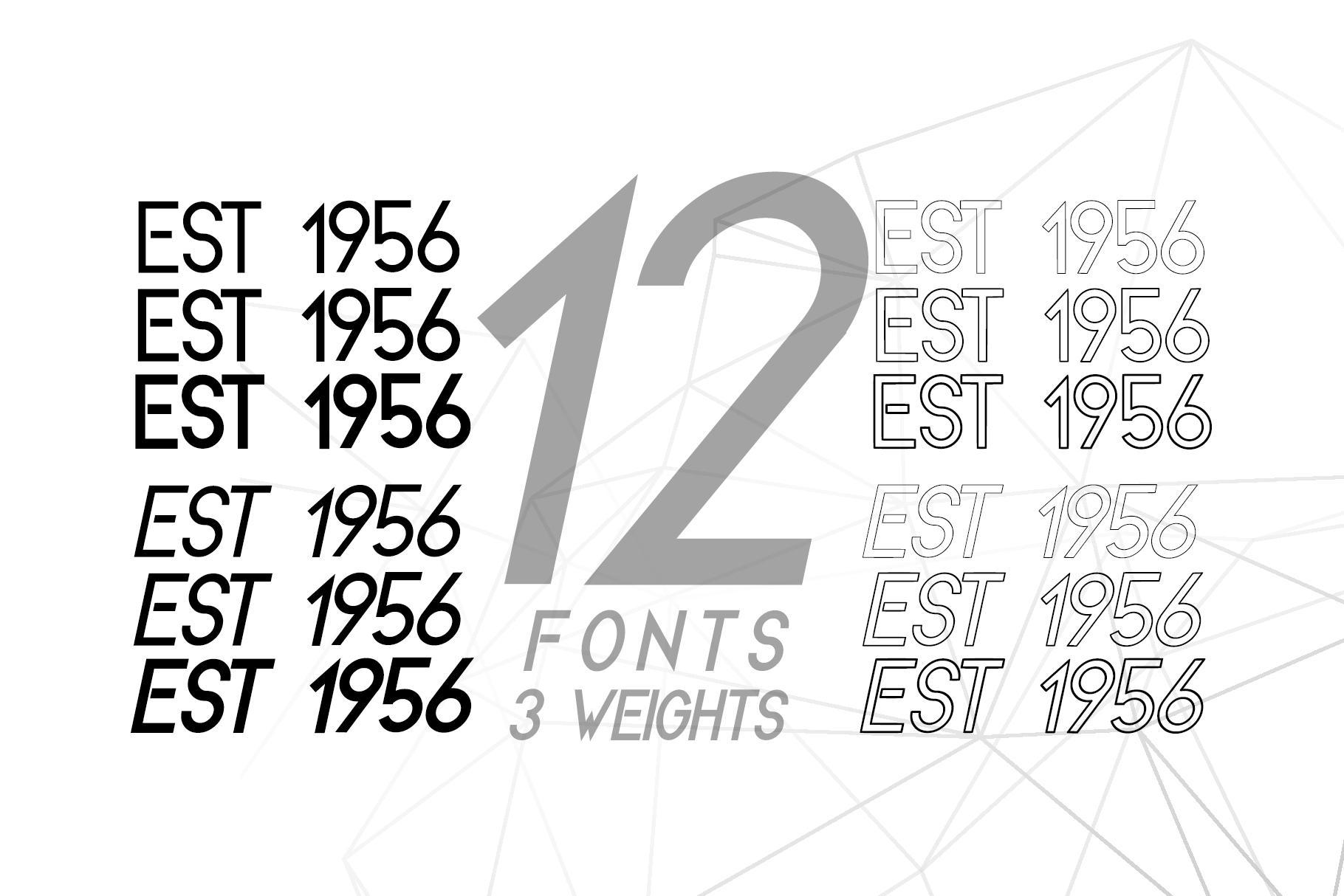 Melvick - 12 Font Family & EXTRA LOGO example image 7