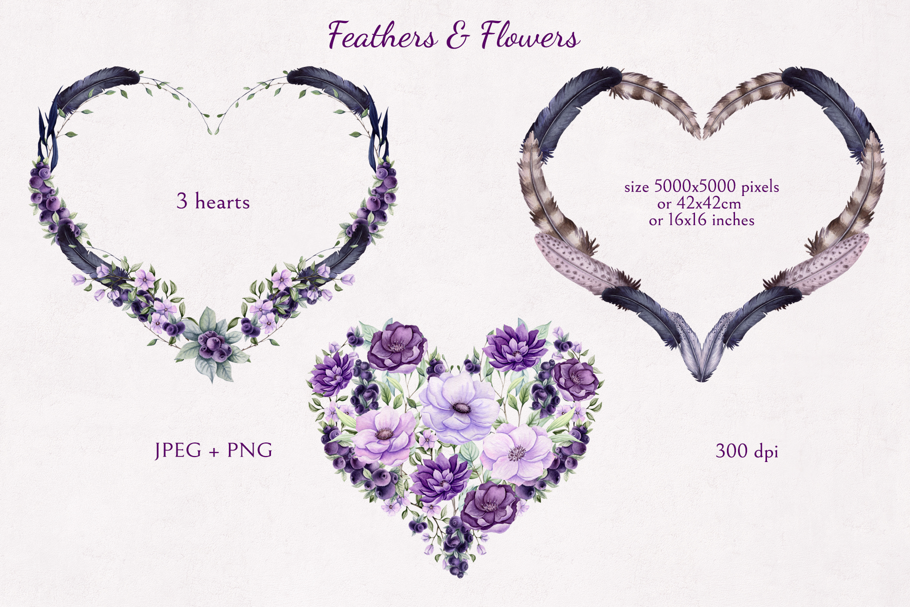 Feathers & Flowers example image 3
