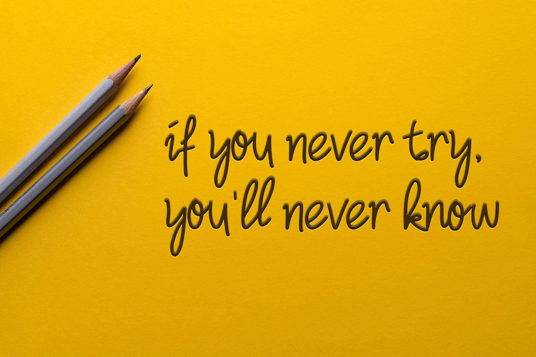 Camellia Handwritten Font example image 8