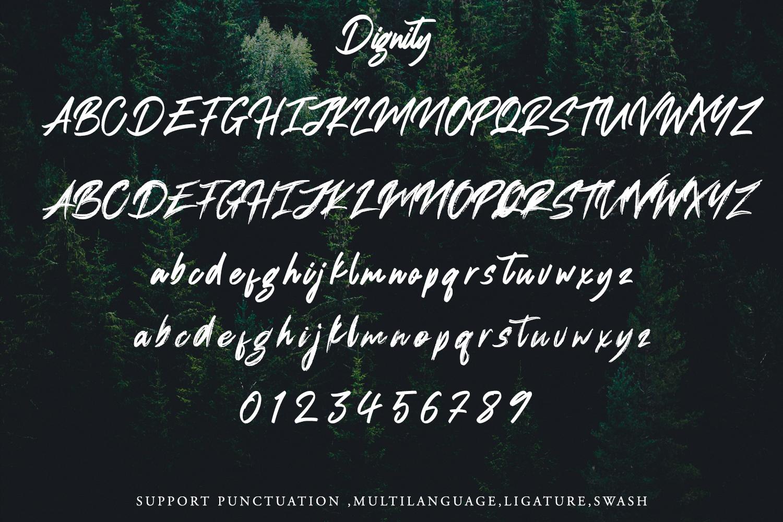 Dignity Brush Typeface example image 8