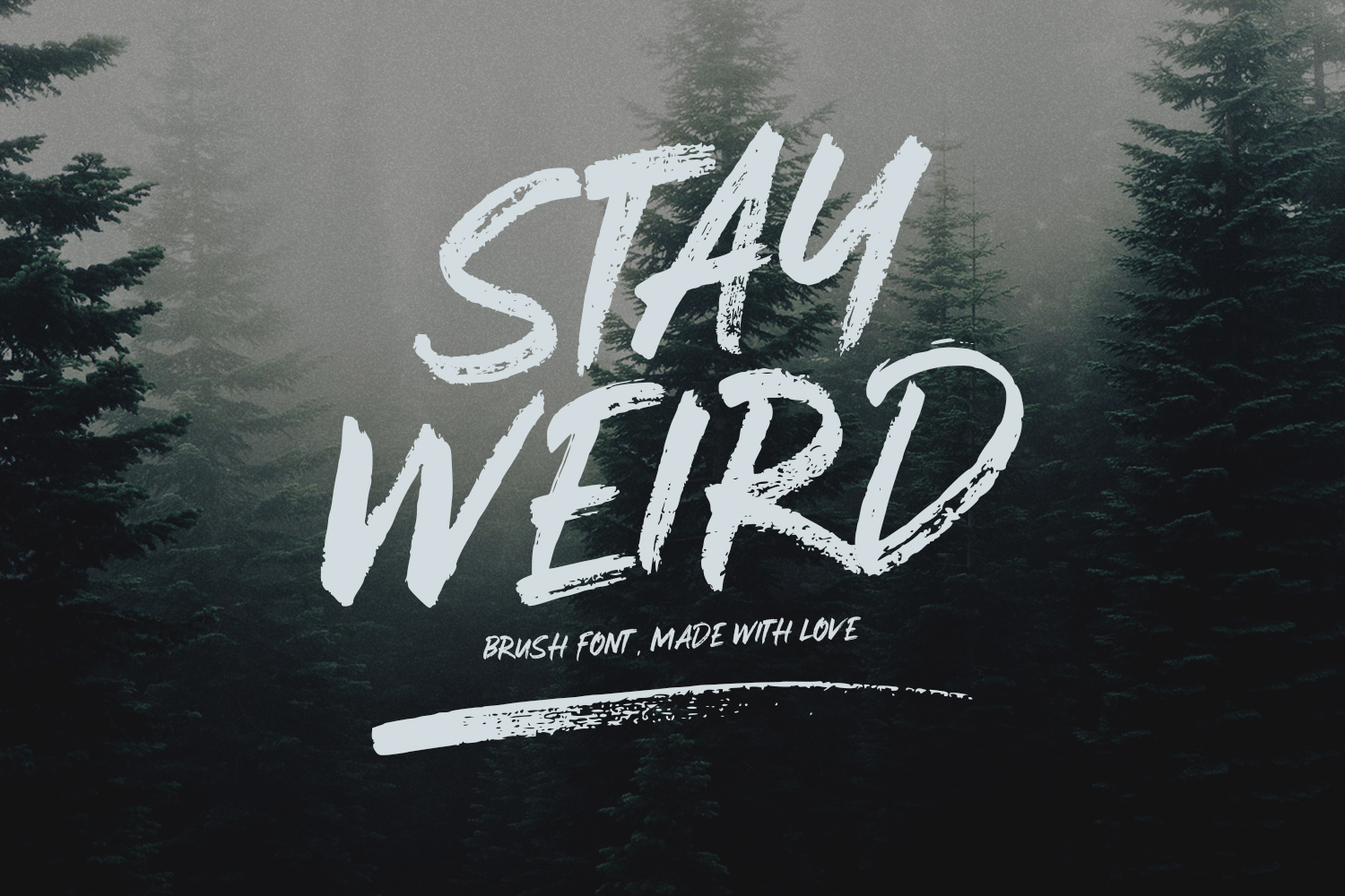 Stay Weird - Brush Font + Swashes example image 1