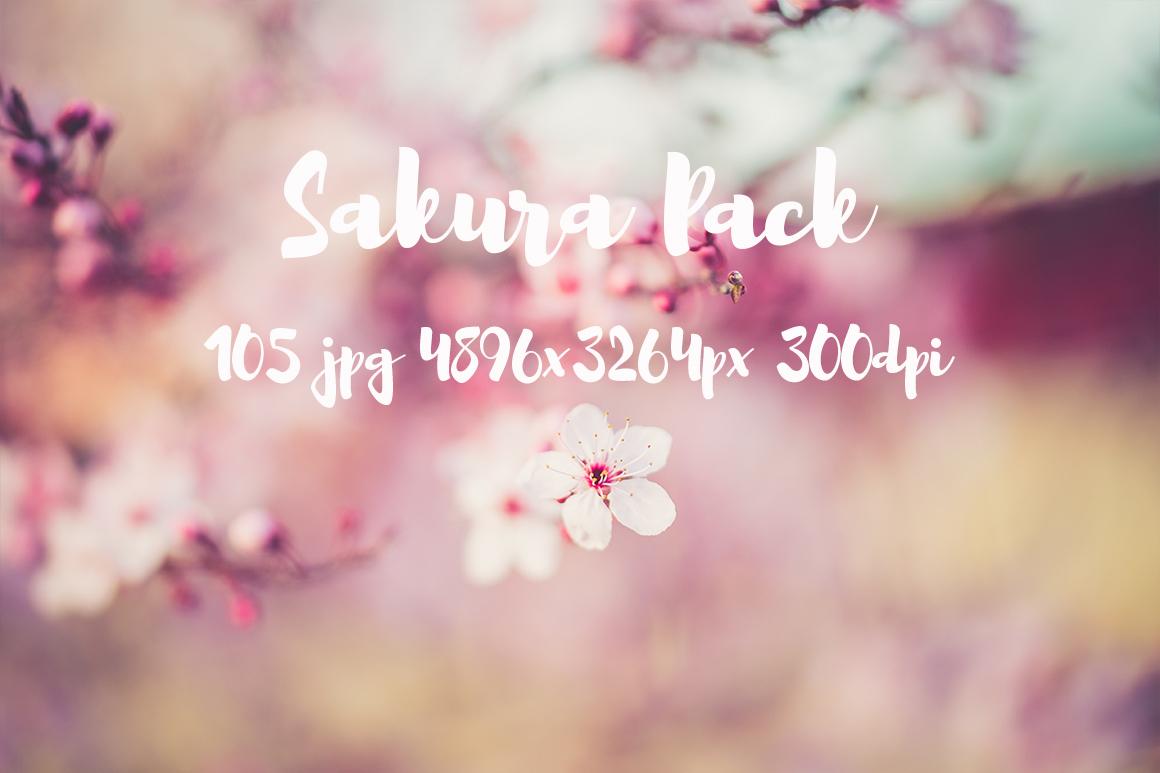 sakura photo pack example image 23