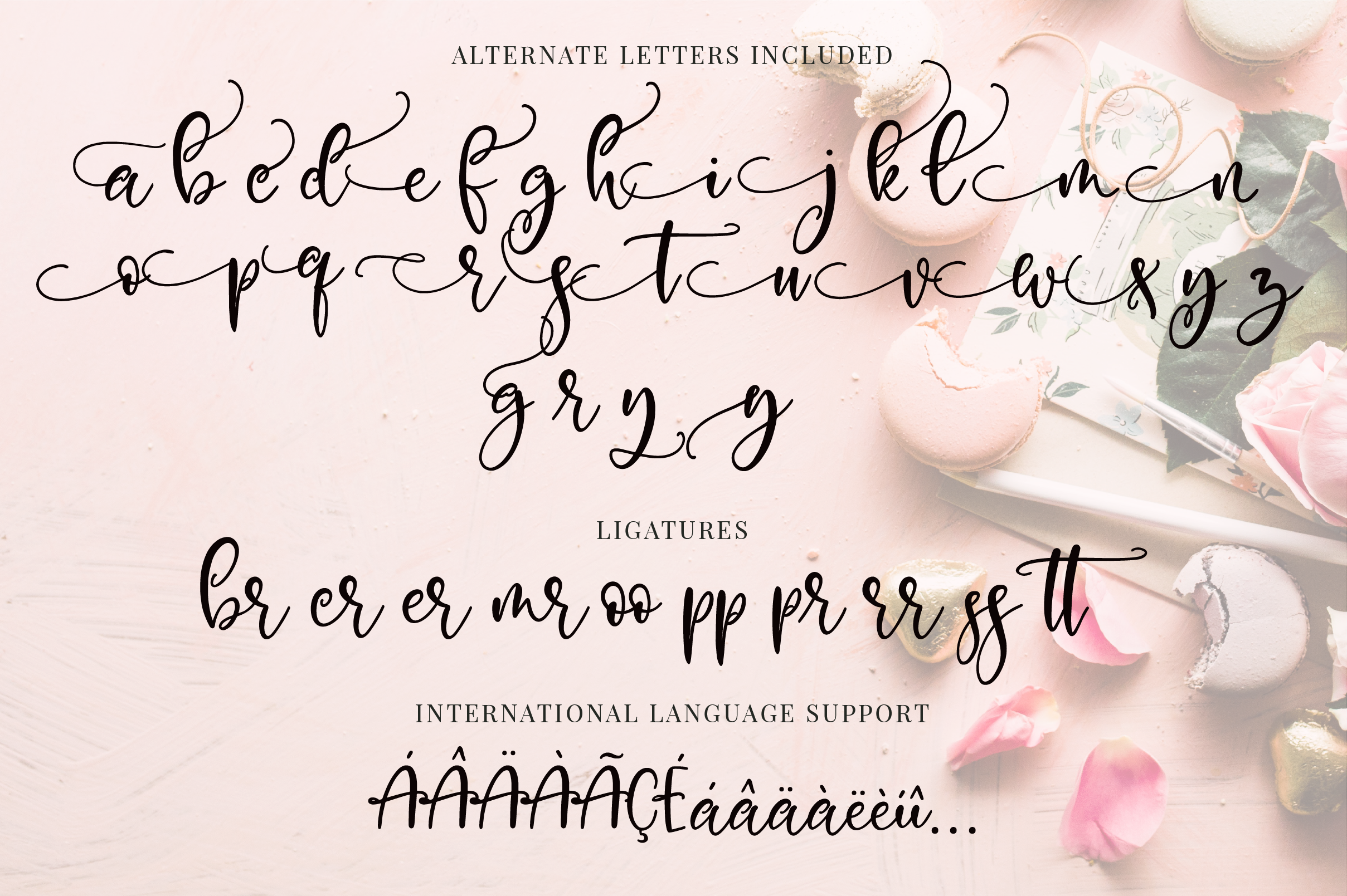 Exclusively Chic Font Duo example image 11
