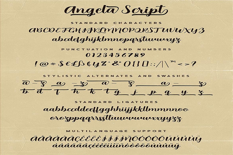 Angela Script Font example image 6
