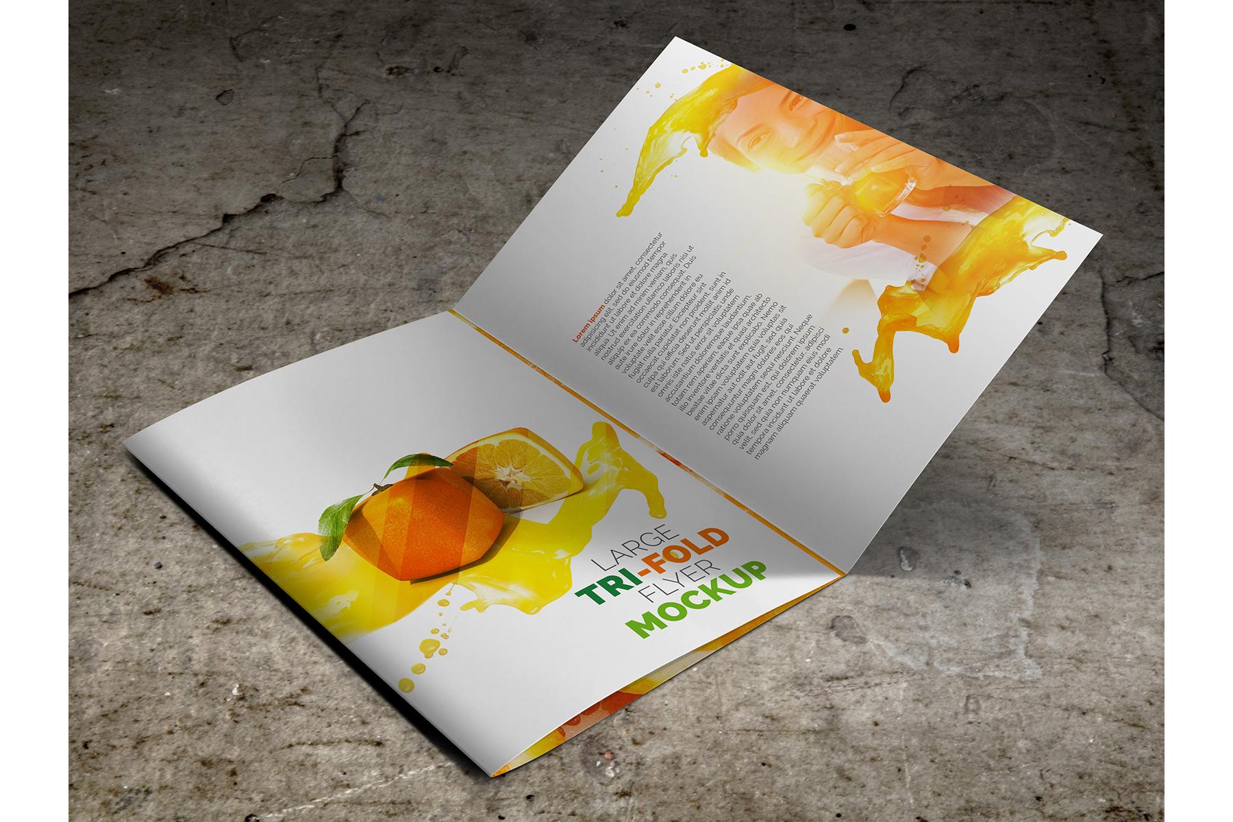 Large Trifold Brochure Mockup example image 4