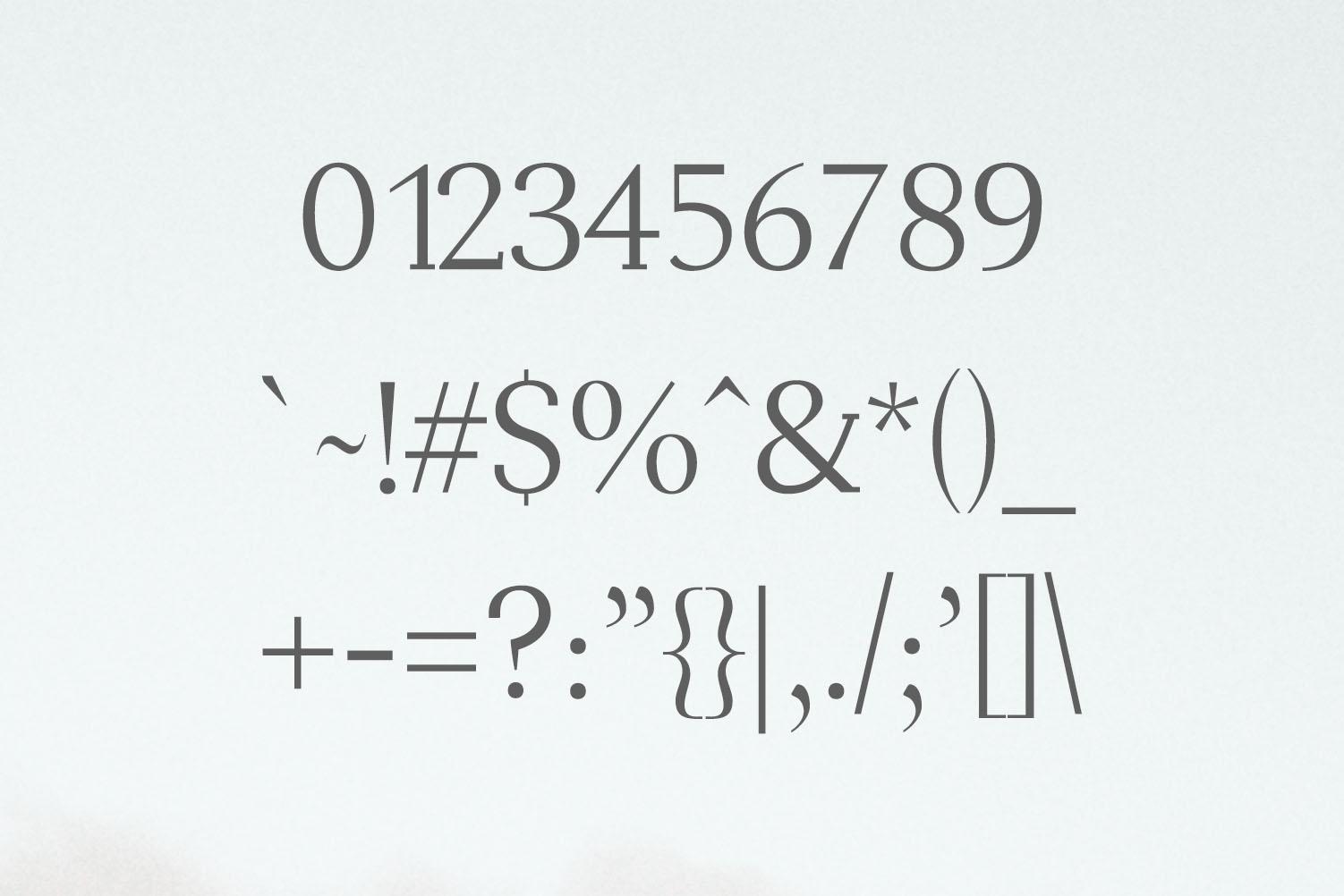 Adrina Modern Serif Font Family example image 3