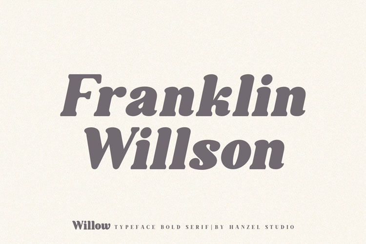 Willow. Typeface Bold Serif example image 2