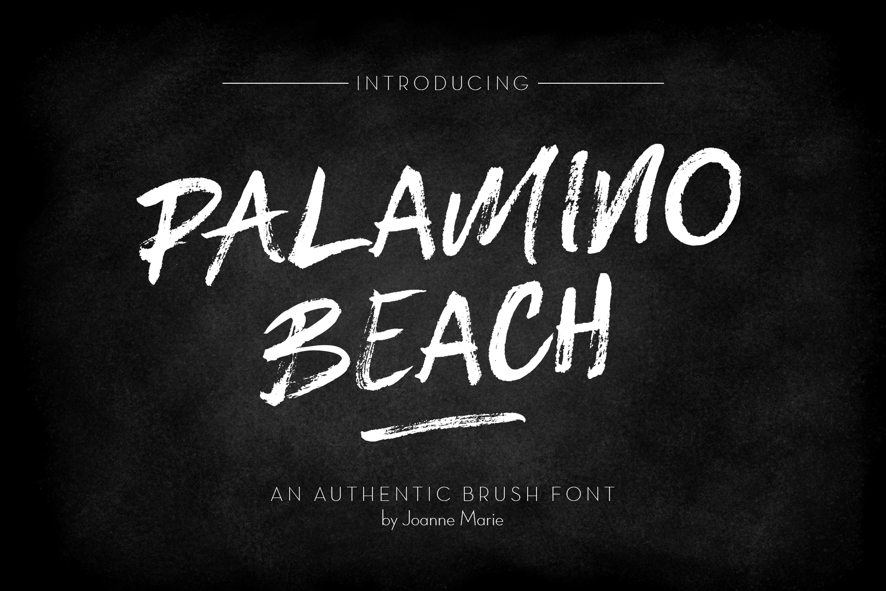 Palamino Beach Brush Font example image 12